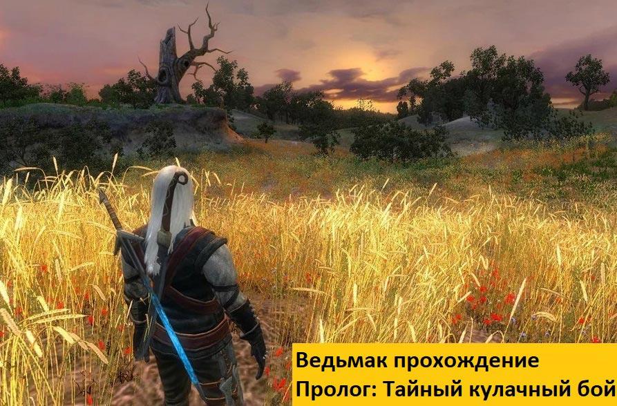 Ведьмак прохождение Пролог: Тайный кулачный бой Беренгара